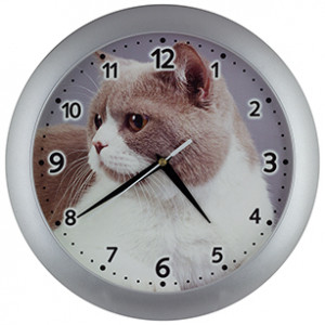 Kids' wall clock Cat