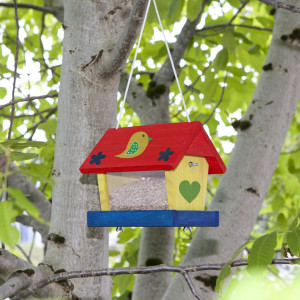 Birdhouse kit including paints and brushes