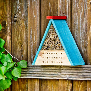 Insect hotel kit including paints and brushes