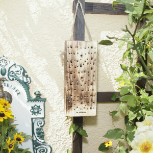Forest bee nest wood - nesting aid for bees